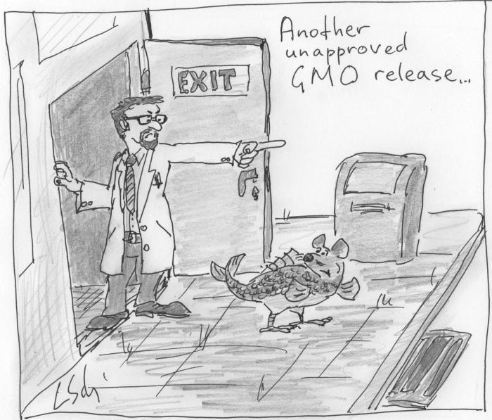 GMO release