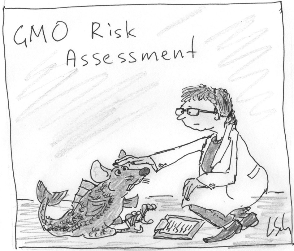 GMO risk assessment