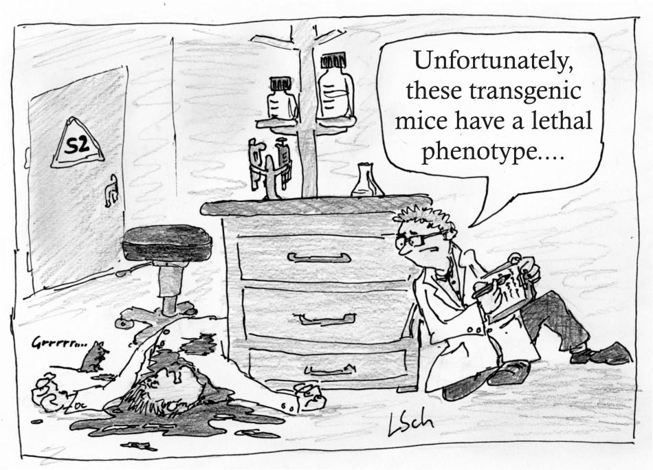 lethal phenotype-new