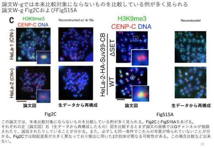 Yoshinori Watanabe data manipulations: much worse than officiallypresented