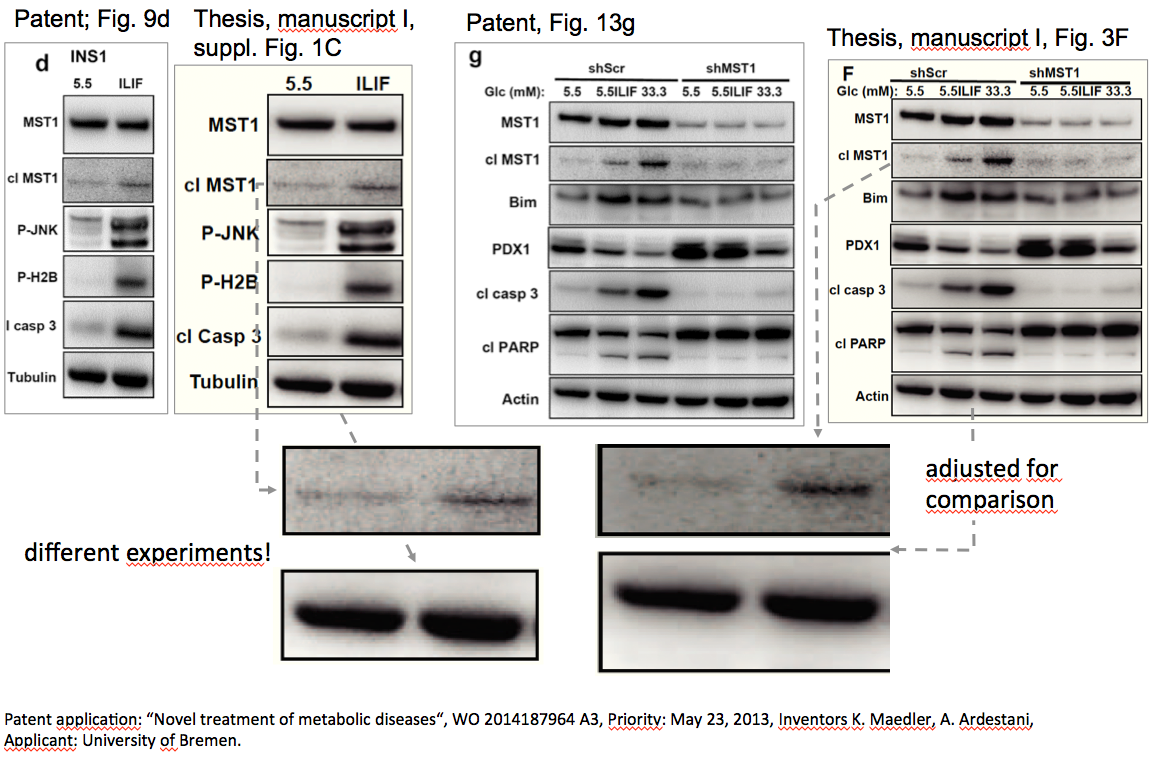 Vergleich thesis und patent Fig. 13g und S1c