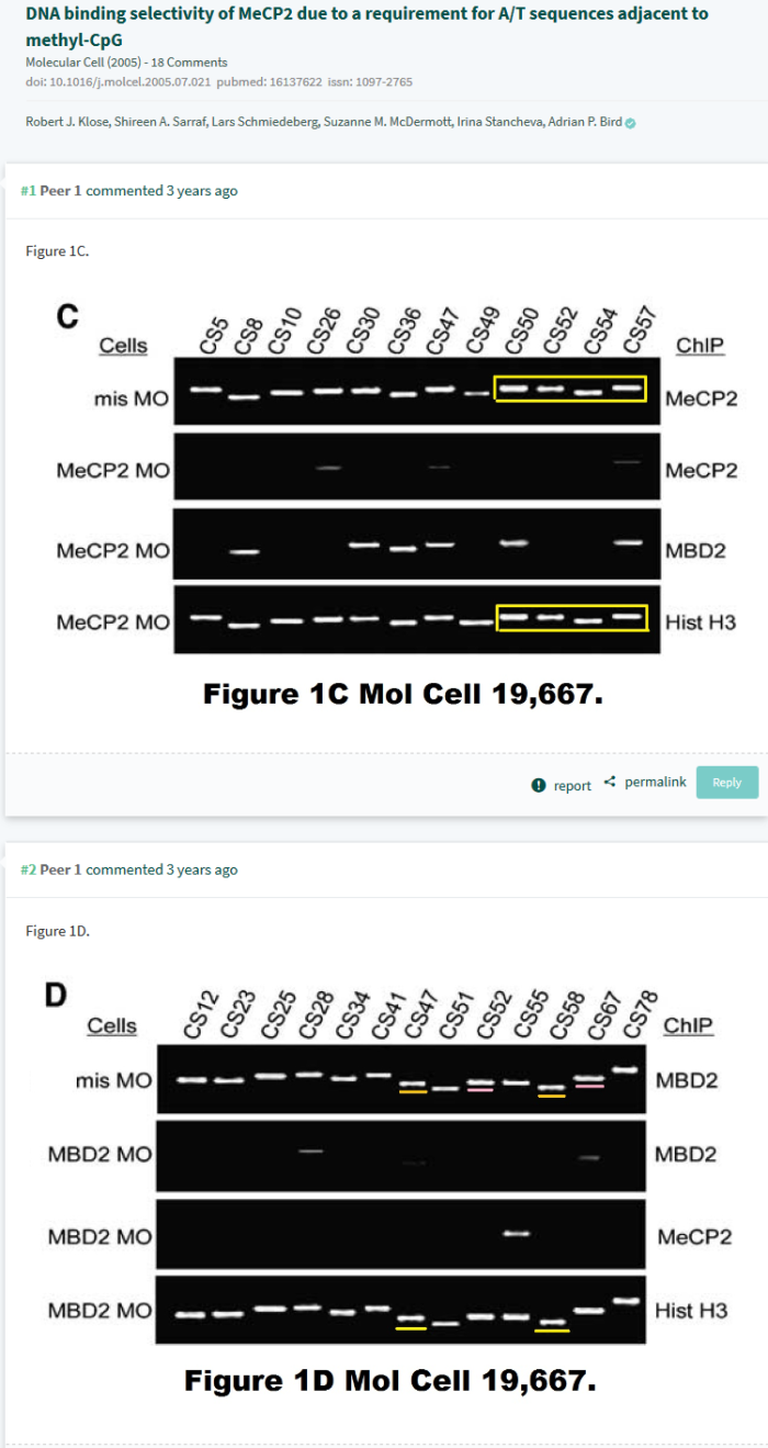 Screenshot-2018-6-18 PubPeer - DNA binding selectivity of MeCP2 due to a requirement for A
