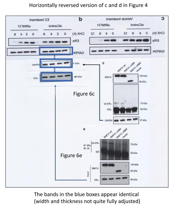 oncogene2014