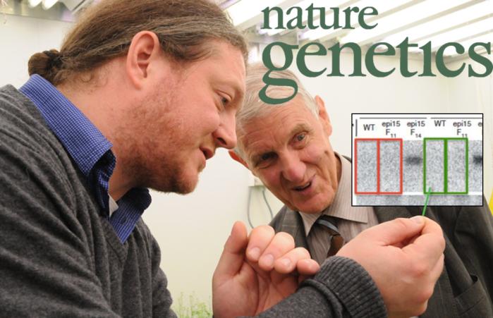 Why Nature Genetics overlooks Voinnetcheatings