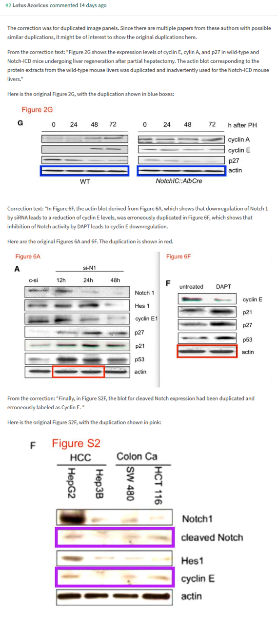screenshot_2019-01-07 pubpeer - a critical role for notch signaling in the formation of plentz