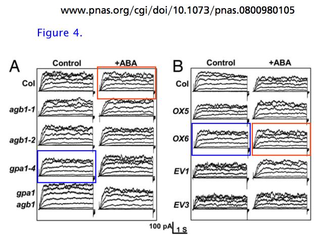 PNAS Fig 4