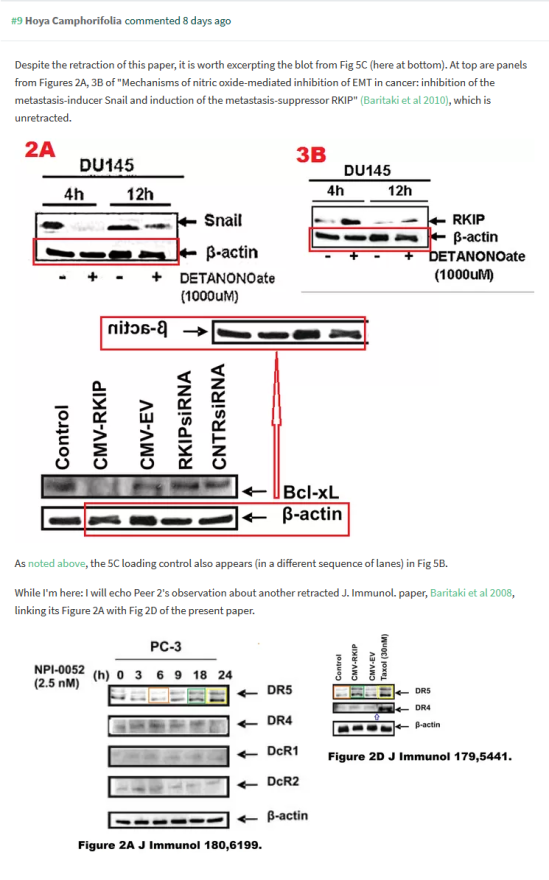 Screenshot_2019-05-20 PubPeer - Regulation of tumor cell sensitivity to TRAIL-induced apopto